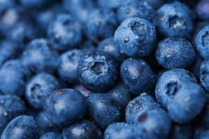 Top 10 Superfoods to Eat Every Day - Blueberries