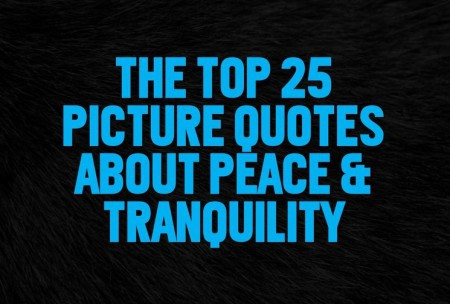 Top Quotes | Top 25 Picture Quotes About Peace Tranquility Wealthy Gorilla