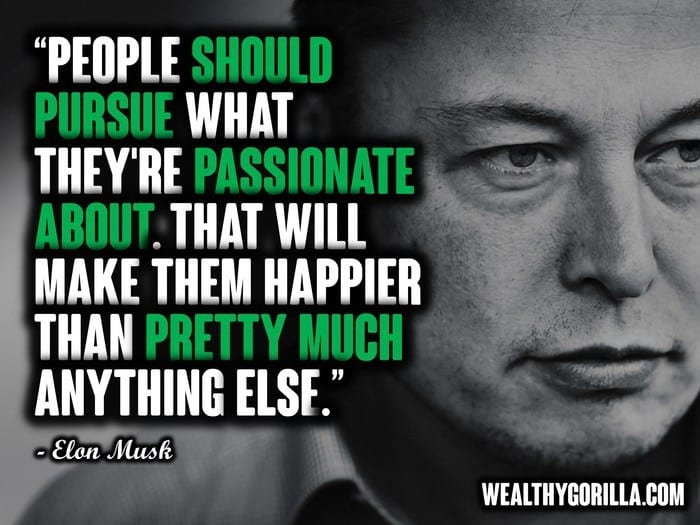 Elon Musk Quotes - Picture 2