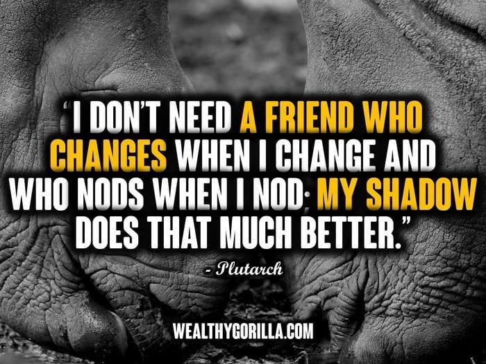 Best Friend Quotes - Picture (12)