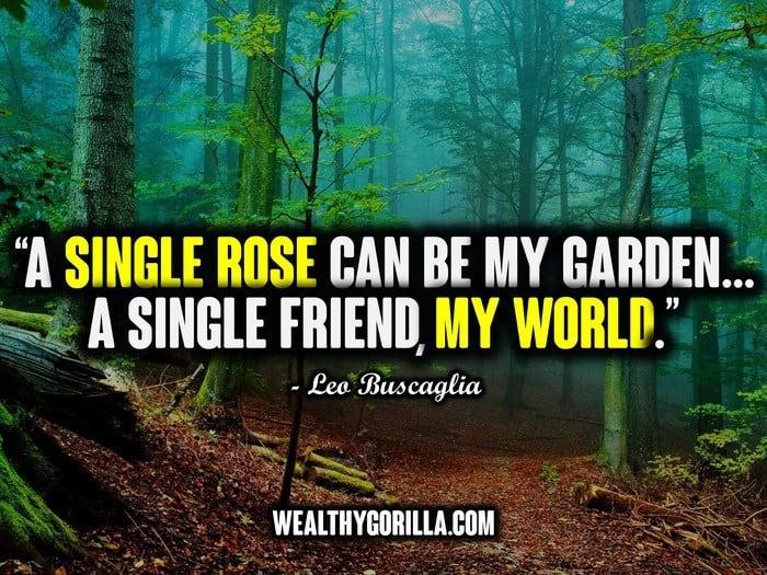 Best Friend Quotes - Picture (8)