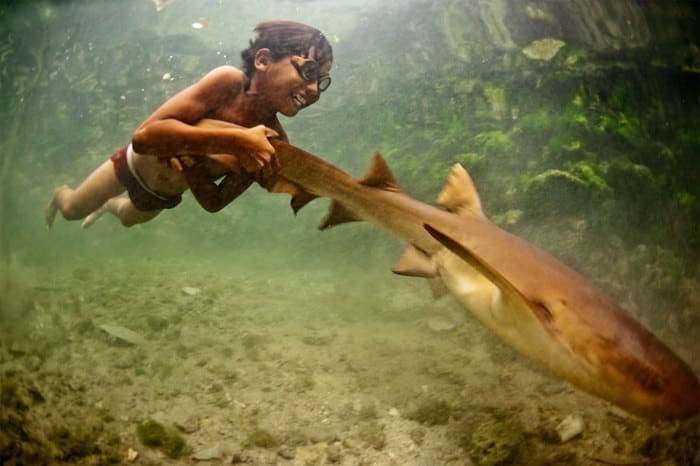 25 Bajau Laut Nomad Boy Riding Shark – Wangi Wangi Indonesia