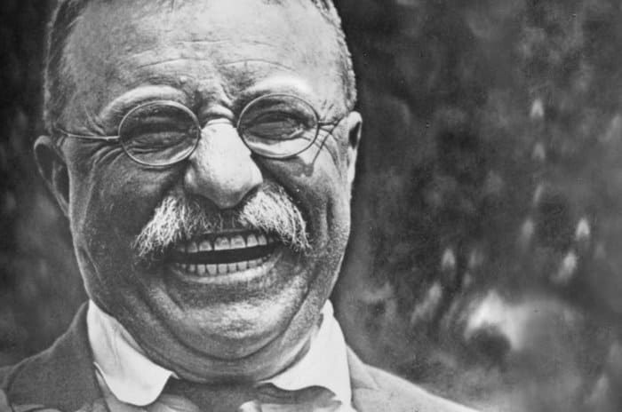 37 Theodore Roosevelt Quotes About Greatness