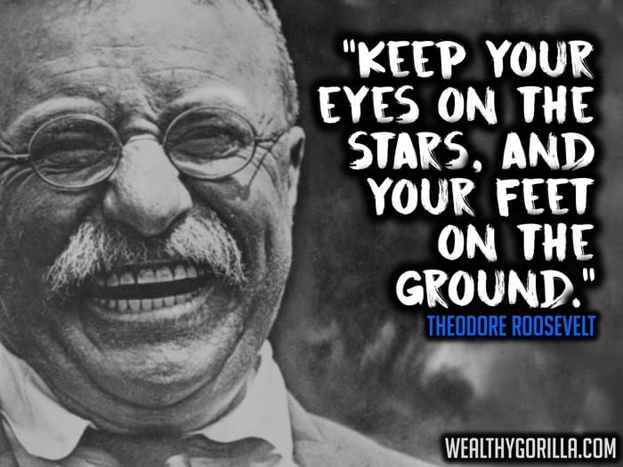 Theodore Roosevelt Quotes (3)