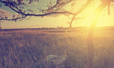 10 Important Things You Should Do to Simplify Your Life