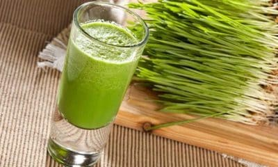 10 Powerful Benefits of Consuming Wheatgrass Daily