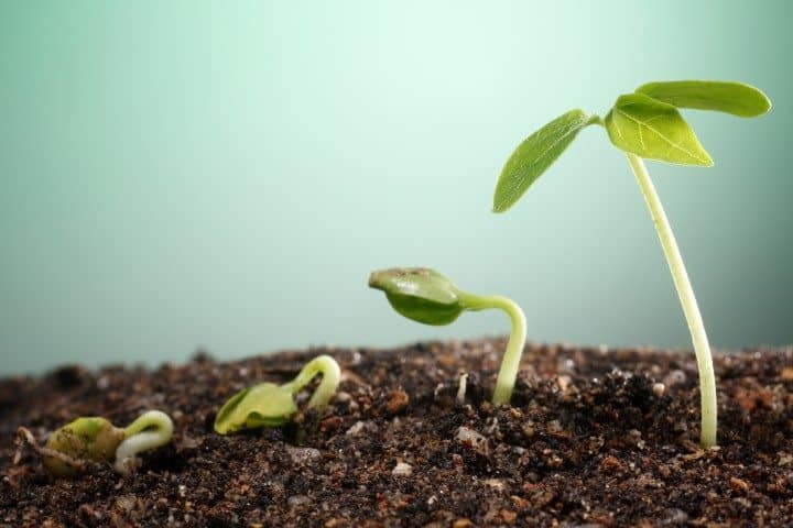 Habit Growth - 7 reasons to start tracking your habits (Small)