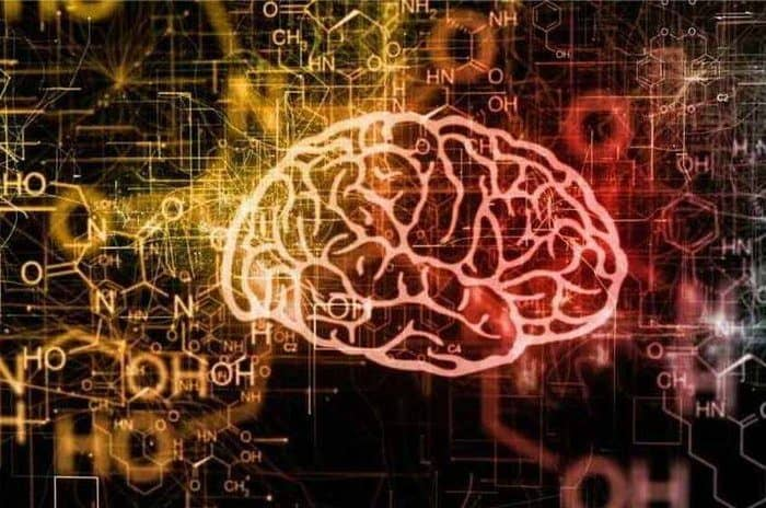 Top 10 Best Brain Nootropic Supplements