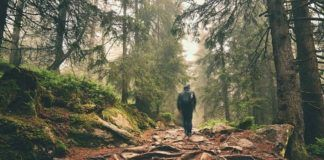 4 Indisputable Steps to Stop Living An Average Life