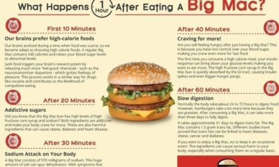 What Happens One Hour After Eating A Big Mac