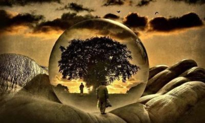 How to Access You Inner Genius With Lucid Dreaming