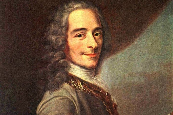 Quotes Voltaire Awesome 27 Witty Enlightening & Famous Voltaire Quotes  Wealthy Gorilla