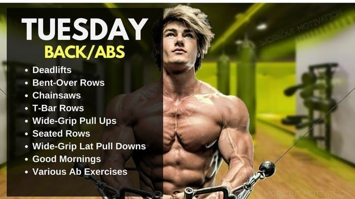 Jeff Seid Workout Routine - Back
