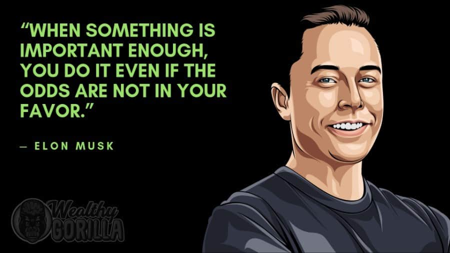 Elon Musk Quotes 3
