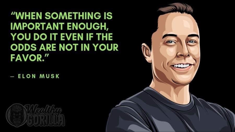 Elon Musk Quotes 3