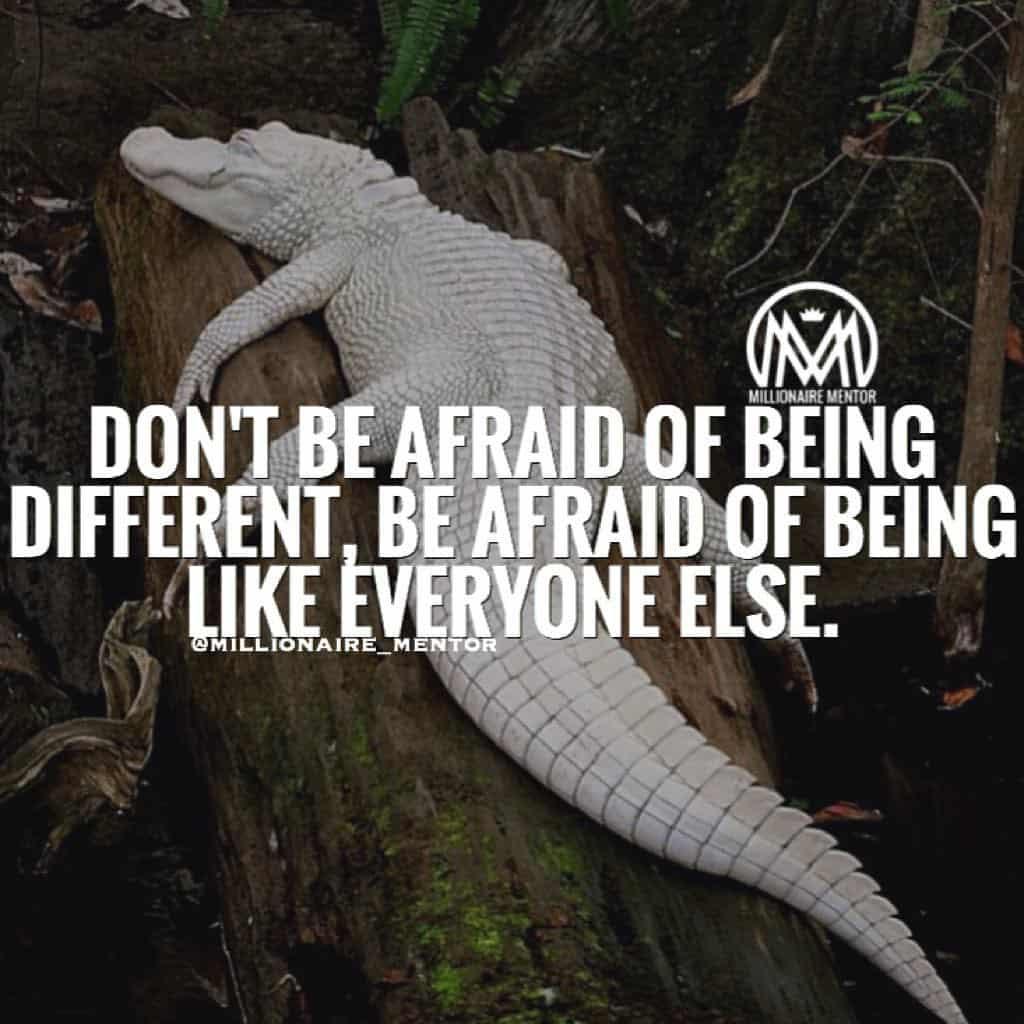 Great Instagram Quotes - Millionaire Mentor