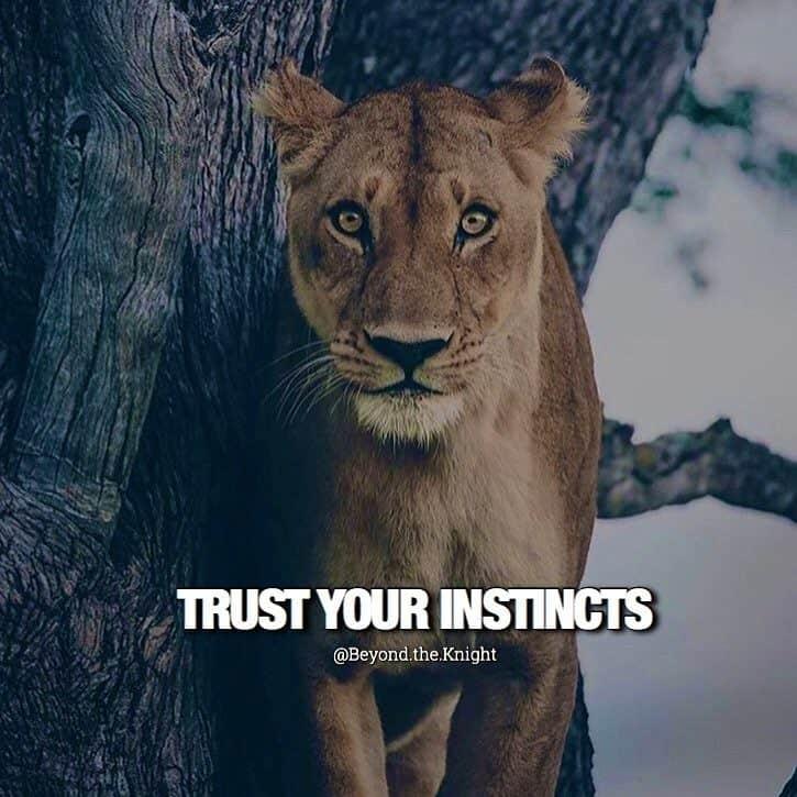 """Trust your instincts."" - quote"