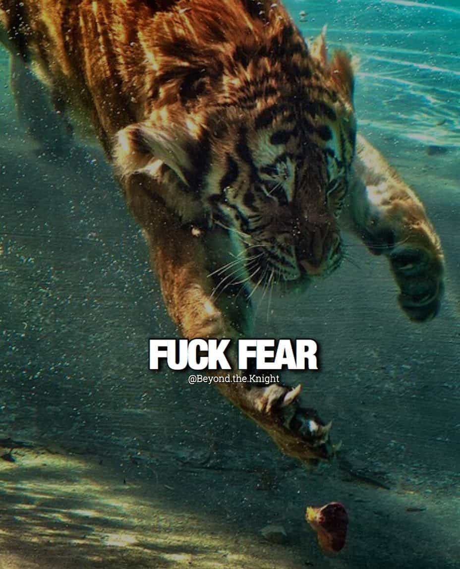 """""""F*** fear."""" - quote"""