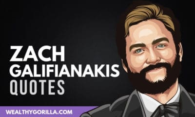 The Best Zach Galifianakis Quotes