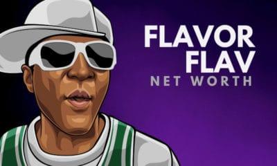 Flavor Flav's Net Worth