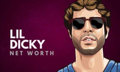 Lil Dicky's Net Worth