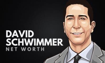 David Schwimmer's Net Worth
