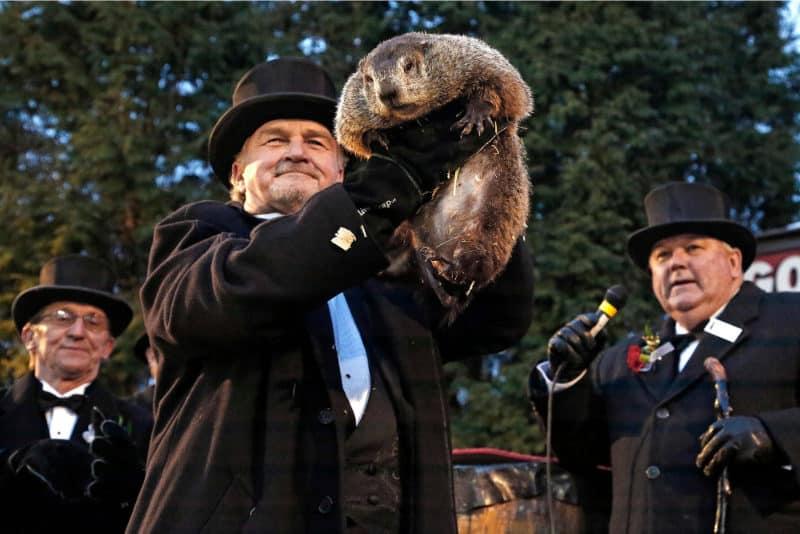 Funniest Movies - Groundhog Day