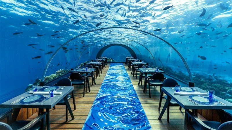 Most Expensive Restaurants - Ithaa Undersea - Maldives