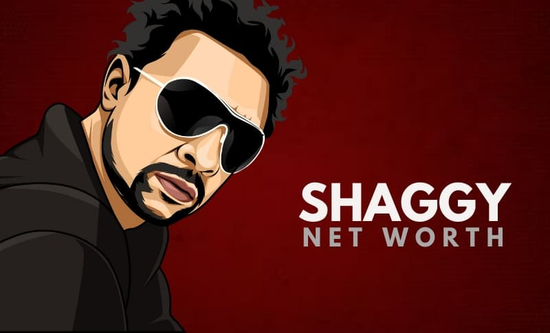 Shaggy's Net Worth