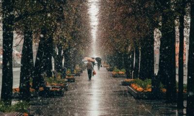 50 Deep & Inspiring Rainy Day Quotes