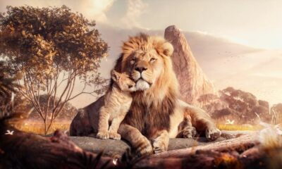 The Best Lion King Quotes