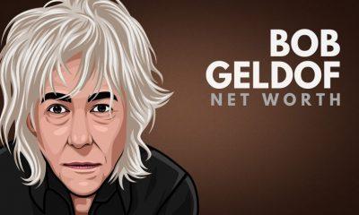 Bob Geldof's Net Worth