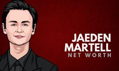 Jaeden Martell's Net Worth