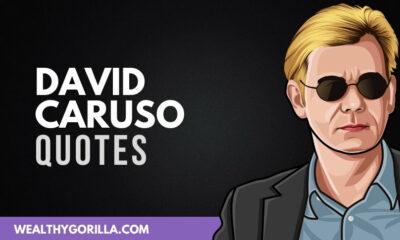 David Caruso Quotes