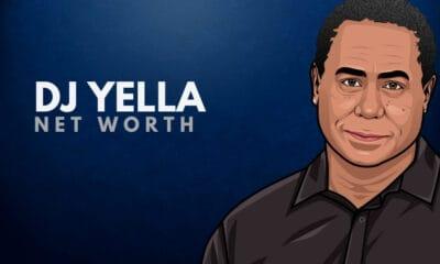 DJ Yella's Net Worth