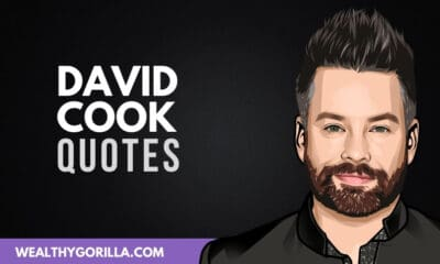 40 David Cook Quotes On Careers & Music
