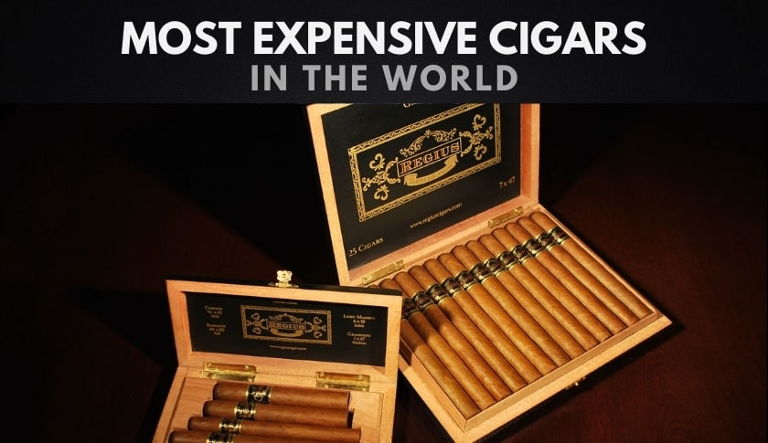 The 10 Most Expensive Cigars in the World
