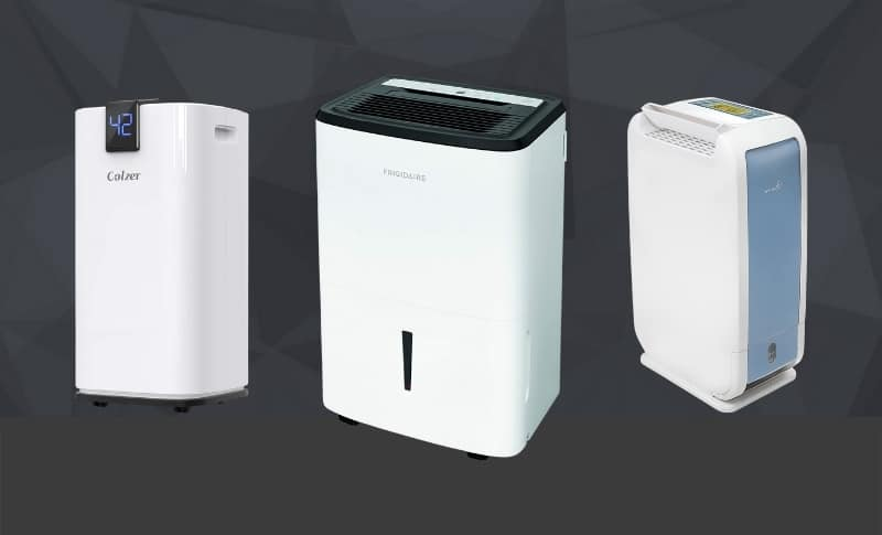 The 10 Best Dehumidifiers